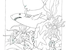 Ocean Coloring Sheets Childrens Waves Pages For Adults Life Free