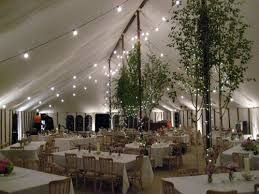 marque lighting. festoon lighting and fairy lights within marquee marque