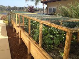 how to make a raised bed garden. How To Make Raised Vegetable Garden Beds Photo - 2 A Bed