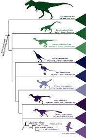 Human Family Tree Chart This Family Tree Charts How Dinosaurs Became Modern Birds