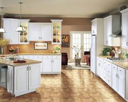 White Thermofoil Cabinet Doors For Decoration The Inspiring Pic Is