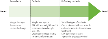 definition and classification of cancer cachexia an international hi res