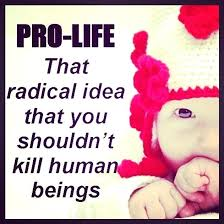 Pro Life Quotes Magnificent Pro Life Quotes Kaginavi Stunning Quotes