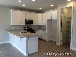 Kitchens With White Appliances Extraordinary White Kitchen Cabinets With Stainless Appliances
