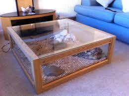 terrarium coffee table perfect for interior full size of coffee table  terrarium display table tortoise vivarium . terrarium coffee table ...