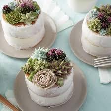 Stunning Succulent Cakes Wilton