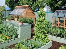 Small Picture Vegetable Garden Design Ideas Nz Ideasidea