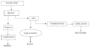 Flow Chart For Bioethanol Energy And Sugar Production From