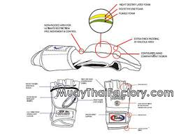 Fairtex Mma Gloves Size Chart The Best Quality Gloves