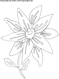 Flower Page Printable Coloring Sheets Images