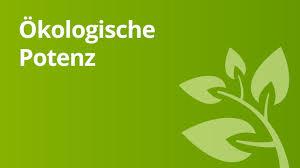 Ökologische potenz definition einfach erklärt