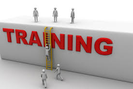 Training Strategy Developing An Effective Training Strategy Hr Daily Advisor