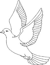 Dessin Pigeon En S Comment Dessiner Un Pigeon Facile Pour Pour