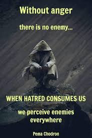 Rage Quotes Enchanting Without Anger There Is No Enemy When Hatred Consumes Us We Perceive