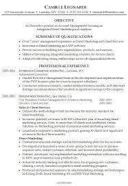 Summary For Resume Examples Cool Summary Resumes Examples Professional Summary For Resume
