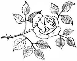rose sketch black and white clipart library