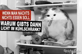 Lustige Sprüche Essen Und Abnehmen Katze Im Kühlschrank Sprüche
