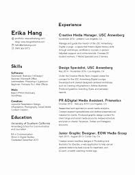 11 Fresh Combination Resume Examples Pictures Professional Resume