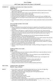 Sample Resume Of Store Manager Store General Manager Resume Samples Velvet Jobs