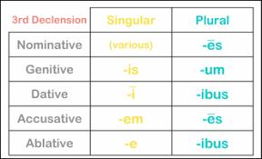 Latin 3rd Conjugation Chart 3rd Declension Nouns Unit 1 Latin 1 Adv
