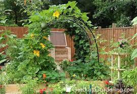 45 diy vegetable garden trellis ideas