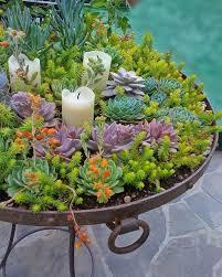 ... Fascinating Succulent Planters 1000 Ideas About Succulent Planters On  Pinterest