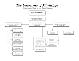 Student Life Org Chart Office Of Institutional Research Effectiveness And