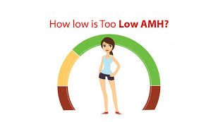 Low Amh Levels What Is Low Amh Test Amh Level Test
