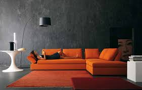 Orange Couch Living Room Best 10 Adorable Shag Area Rugs For Chic Living Room Interior
