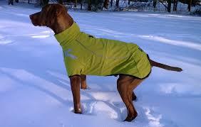 Hurtta Frost Dog Jacket Winter Coat Waterproof Windproof