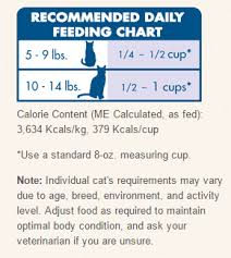 Cat Nutrition Learn How To Best Feed Your Feline Fluffy Kitty