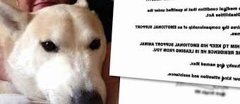 Doctors Note For Dog Get Doctors Note For Emotional Support Dog Petswithlove Us