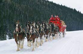 Christmas Horse Wallpapers - Wallpaper Cave