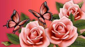 Pink Butterflies and Roses HD Wallpaper ...