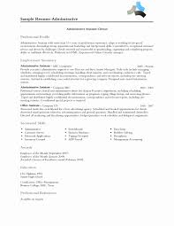 Artist Resume Examples Fresh Professional Profile Sample How To