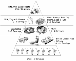 Small Picture food pyramid coloring 15 606x487 My Ideal Frozen Meal for One