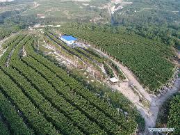 china tangshan gs aerial photo cn