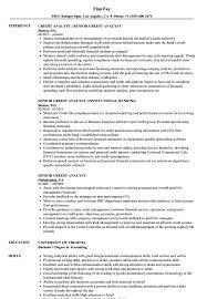 Credit Analyst Resume Senior Credit Analyst Resume Samples Velvet Jobs