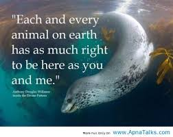 Love Animals Quotes Simple Each Every Animal Love Animal Quotes Apna Talks Animals