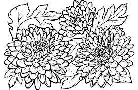 Bộ sưu tập các bức tranh tô màu hoa cúc cho bé thỏa sức tô màu