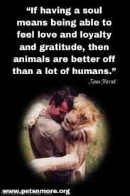 Pets N More Inspiring Quotes For People Who Love Animals Gorgeous Love Animal Quotes