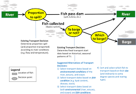 1 Flow Chart Of General Management Decisions Related To The