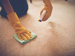 how to remove vomit stains from clothes and carpet