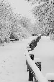 black and white snow photography. Unique Snow Black U0026 White Snow Photography In And