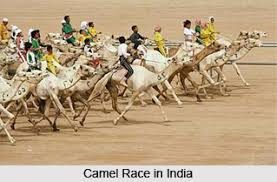 short essay on games and sports in india   reportthenewsweb  short essay on games and sports in india