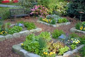 Small Picture backyard vegetable garden ideas Architectural Design
