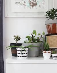 diy painted plant pot ideas
