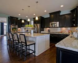 Modren Dark Kitchen Cabinets Colors By Maxine Schnitzer Photography With Ideas