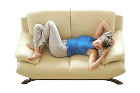 Furniture Steam Cleaning Upholstered Furniture Interior