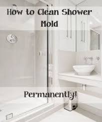 best way to clean bathroom. Simple Clean Top Ways To Clean Your Shower Mold  Pinterest Mold Shower  And Cleaning Mold In Best Way To Bathroom